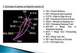 Image result for posselt s envelope of motion