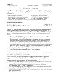 Executive Summary Resume Example Unique Samples Prime It Of Re Large Size