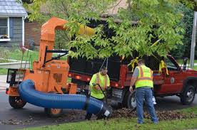 100 Leaf Vacuum Truck Fall Control Study Continues In The Lake Wingra Watershed