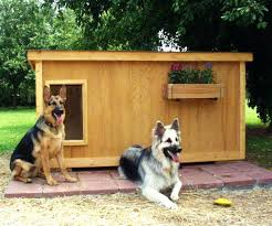 Ecochoice Rustic Lodge Dog House Smartly Birthday Decoration Ideas Then Large Backyard Mediu