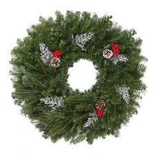 Fraser Fir Christmas Trees Delivered by 25 Beste Ideeën Over Real Christmas Trees Delivered Op Pinterest
