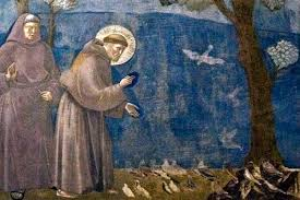 st francis so much more than an animal lover busted halo