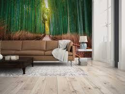 natürliche bildmotivtapete mit bambusweg grün braun
