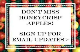 Best Pumpkin Patch Indianapolis by Honeycrisp Apples Tuttle Orchards Inc Indianapolis Apple