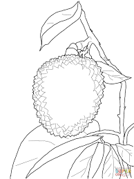 Click The Lychee Coloring Pages