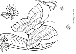 Summer Coloring Pages Free Colouring Page Color Online
