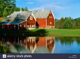 Agriculture - Classic Red New England Barns Reflected In A Farm ... 1024 Best Images About Old Barnsnew Barns On Pinterest Barn New Is Almost Done Jones Farmer Blog Whats At Wood Natural Restorations Londerry The England An Iconic American Landmark January 2016 Turn Point Lighthouse Mule Barn Historic Of Metal Roofing And Siding For Edgewater Carriage House Garage Plans Yankee Homes Scene Through My Eyes Lynden Wa Builders Stable Hollow Cstruction Kent Five Converted In To Rent This Fall
