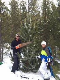 Christmas Tree Permits Colorado Buffalo Creek by Christmas Tree Cutting In Winter Park Jeff Fox At The Fox Group