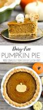 Pumpkin Puree Vs Easy Pumpkin Pie Mix by Dairy Free Pumpkin Pie Joyfoodsunshine