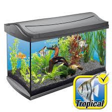 acheter aquarium pas cher aquarium plastique vrac it