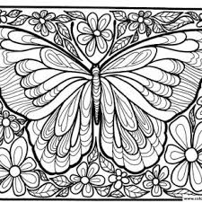 AnimalButterfly Coloring Pages Pattern Download Adult Difficult Big Butterfly Page With Array X