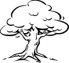 Tree Outline Clip Art at Clker vector clip art online