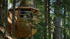 100 Whistler Tree House Hidden House In Receives Growing Attention