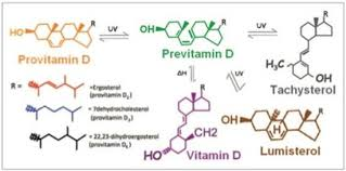 Uv Desk Lamp Vitamin D by Effect Of Ultraviolet Led Radiation On Vitamin D Production In
