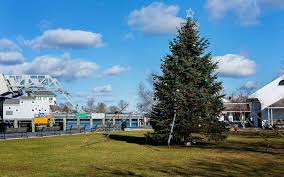 Best Variety Of Christmas Tree by The Best Christmas Trees In The United States Travel Leisure