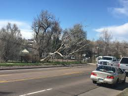 100 Mountain Truck Longmont Strong Winds Blow Over Semi S Down Power Lines Trees CBS