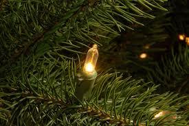 CC Christmas Decor 10 Pre Lit Downswept Douglas Fir Artificial Tree Dual LED Lights