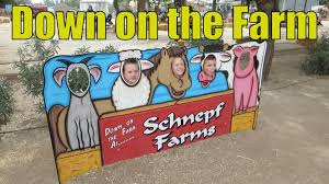 Schnepf Farms Halloween 2017 by Schnepf Farms Fun 10 17 14 Day 931 Youtube