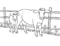 Cow Printable Coloring Page