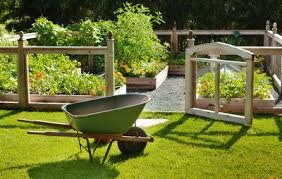 7 Best Raised Garden Bed Kits You Can Buy line