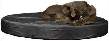 K9 Ballistics Bed by Durable Dog Beds We Pick 5 Of The Best