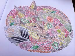 152 Best Millie Marotta Colouring Books Images On Pinterest