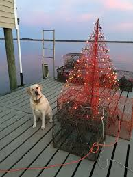 Crab Pot Christmas Trees Dealers by 11 Best I Love Christmas Images On Pinterest Christmas Decor