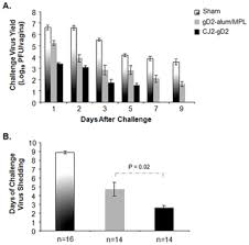 Herpes Viral Shedding Frequency by A Herpes Simplex Virus 2 Hsv 2 Glycoprotein D Expressing