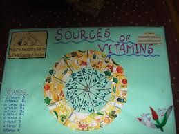 Poster Chart Project On Sources Of Vitamins