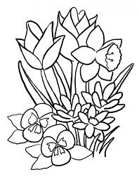 Hibiscus Flower Tattoos Printable Coloring Pages Easy Cute
