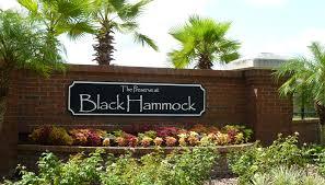 The Preserve at Black Hammock