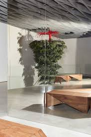 Driftwood Christmas Trees Sydney by Stories On Design Trees In Interiors Curated By Yellowtrace