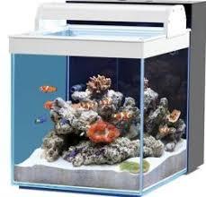 aquarium nano eau de mer aquarium habitat aqua nano eau de mer 40l blanc acheter moins cher