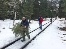 Colorado Blm Christmas Tree Permits by Hiking Tgsg Blog Page 2