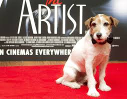 Canine Actor Uggie, Known For Role In 'The Artist,' Dies - Chicago ... Its Going To Weird Some People Out A New Company Will Compost How Do I Keep My Backyard Free Of Murdered Possums Vermin Amazoncom 100 Wireless Pet Coainment System Wifi Radio Dog 39 Best Dealing With Loss Images On Pinterest Loss Man Admits Shooting And Burying Dog In Westside Jacksonville Bunny Rabbit Chases Around The Yard Youtube Backyard Playground Ideas For Your What Do Your Pets Remains After Death Where Bury Dead Pets Or Animals Bengaluru Citizen Matters Burying 2 Monthsold Bunny Doggie Solution Dogs Ideas