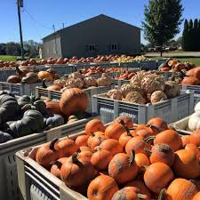 Griffin Farms Pumpkin Patch Alabama by Piggott U0027s Farm Market U0026 Bakery Posts Facebook