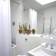 Plants In Bathroom Images by Succulent Plants In The Bathroom Apartment Therapy