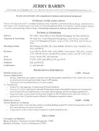 Related Free Resume Examples Information Technology Management