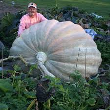 Roger Williams Zoo Pumpkin Spectacular Times by Sngpg Annual Pumpkin Weigh Off Rhode Island Monthly