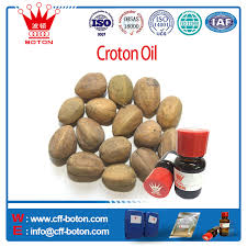 croton oil croton oil suppliers and manufacturers at alibaba com