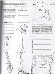 The Anatomy Coloring Book359