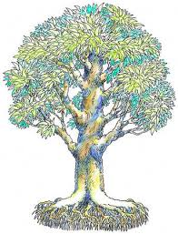 Illustration of tree and roots