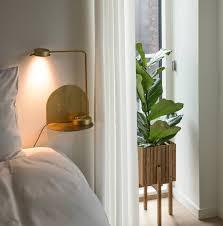die richtige zimmerpflanze für ihr schlafzimmer der