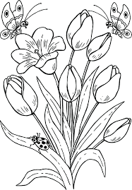 Free Printable Coloring Pages Butterflies Flowers And Hard Drawing Butterfly Tulips Page Full Size