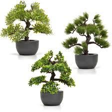 künstlicher bonsai baum im set kunstpflanzen im real de
