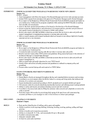 Download Sales Warehouse Resume Sample As Image File