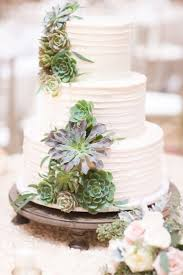 Best 25 Succulent Wedding Cakes Ideas On Pinterest