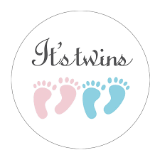 Amazoncom MAGJUCHE Pink And Blue Its Twins Baby Shower Stickers
