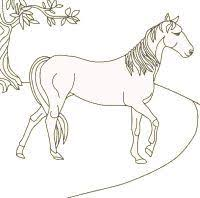 Printable Horse Coloring Pages Sheets And Pictures