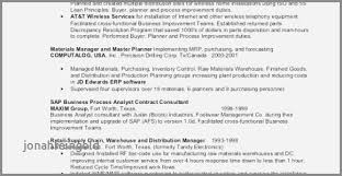Cute Resume Templates Sap Business Objects Examples Basic Nice Pastor
